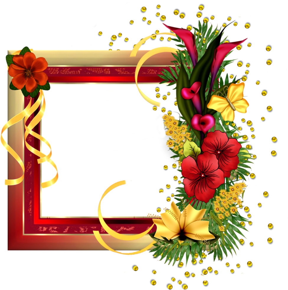 Red Gold Frame With Field Flowers - Happy Birthday Friends Frame (1024x1024), Png Download