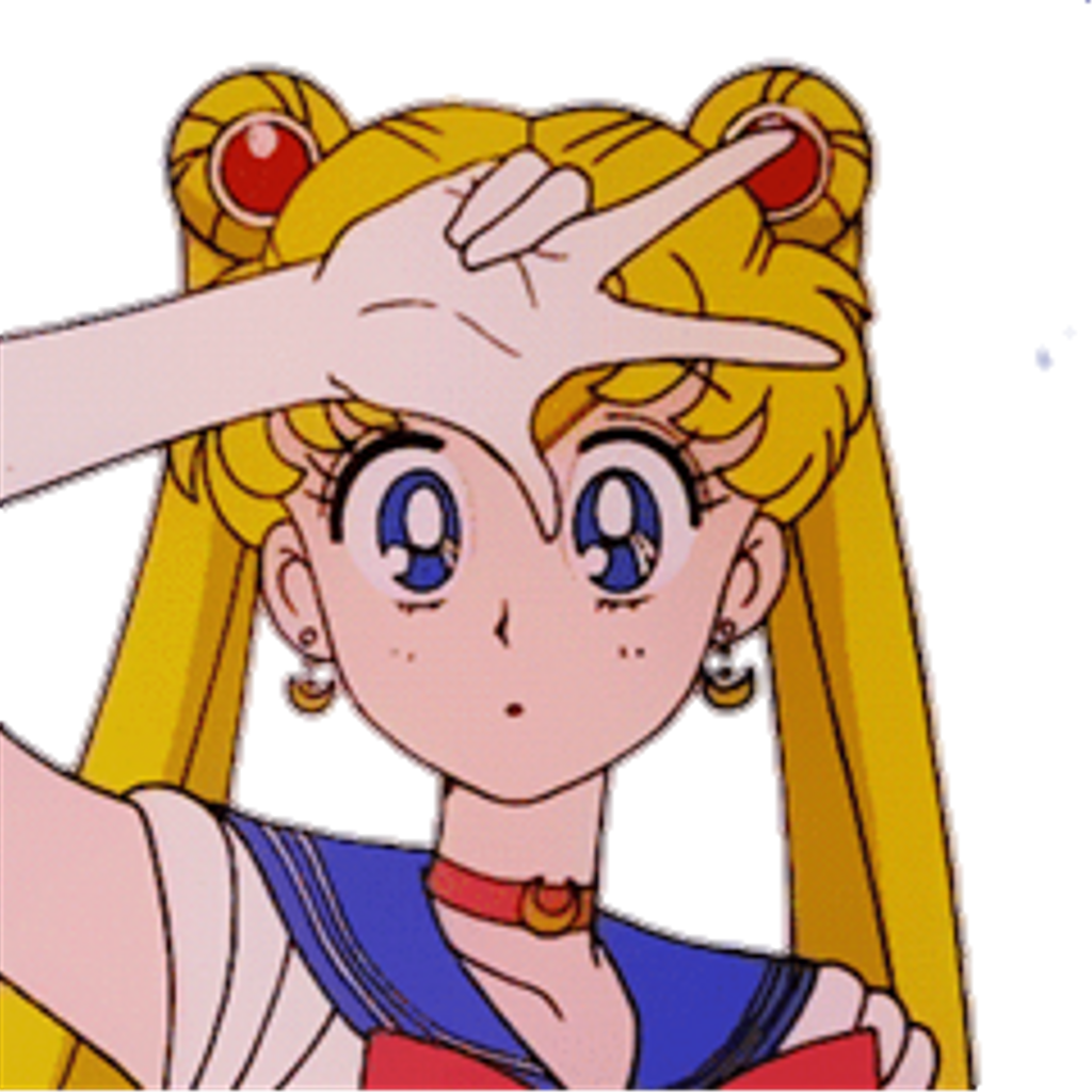Download Aesthetic Sailor Moon Profile PNG Image with No ...