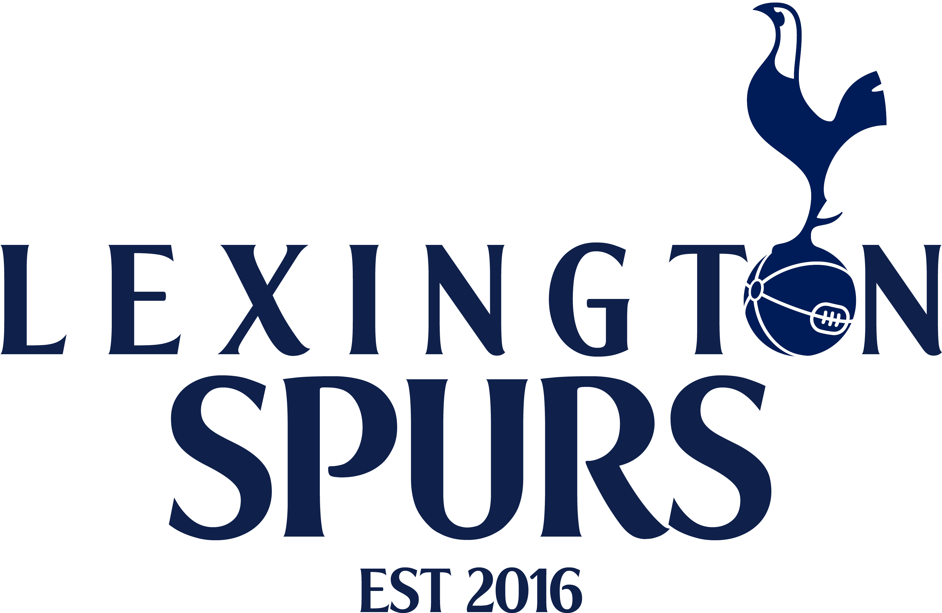 Download Tottenham Hotspur Fans Png Image With No Background Pngkey Com