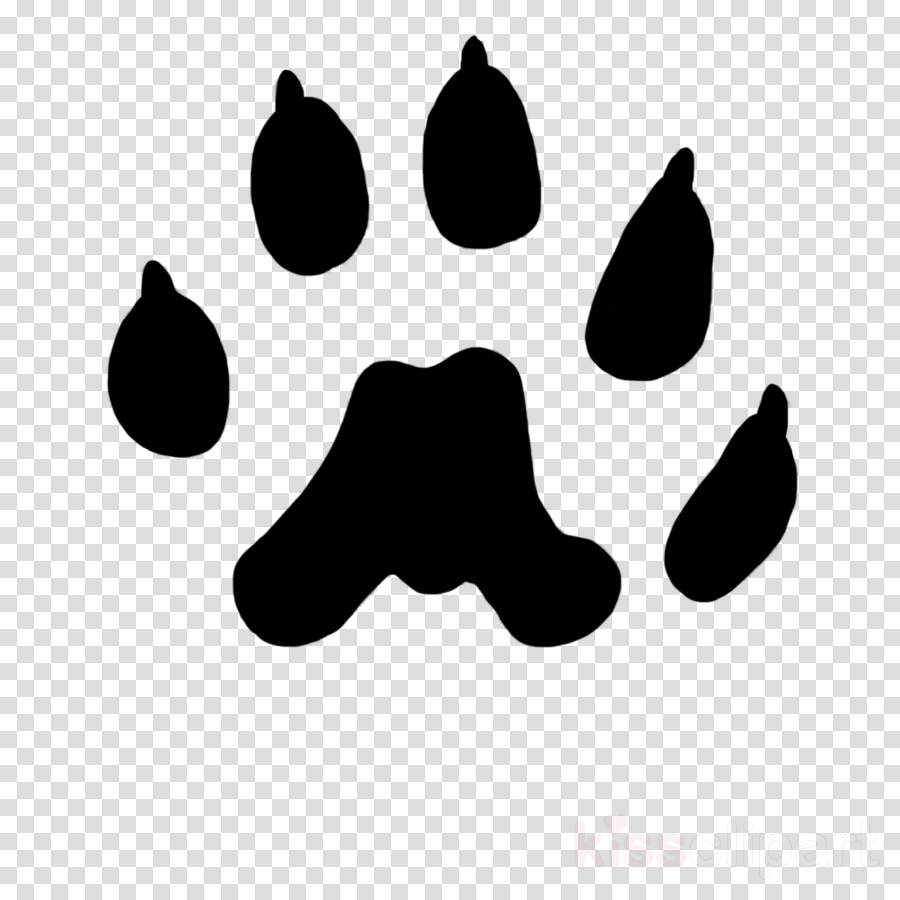 Download Download Weasel Paw Print Png Clipart Weasels Cat Lion Cat Finger Print Png Image With No Background Pngkey Com Cat paw dog , paw prints transparent background png clipart. download download weasel paw print png