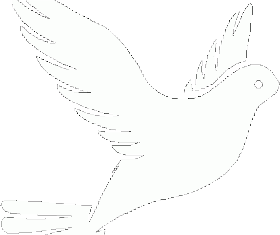 Download White Dove Clipart Faith - Dove Drawing PNG Image