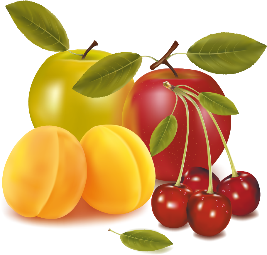 Apples - Cherries Apricots Apples Fruit Mugs (931x921), Png Download