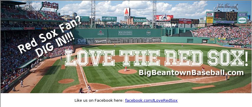 Download I Love The Boston Red Sox Competitors Revenue And Fenway