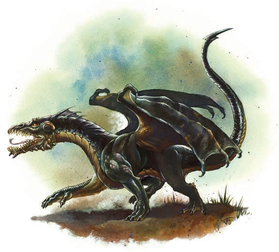 Download Baby Black Black Dragon Wyrmling Png Image With No Background Pngkey Com