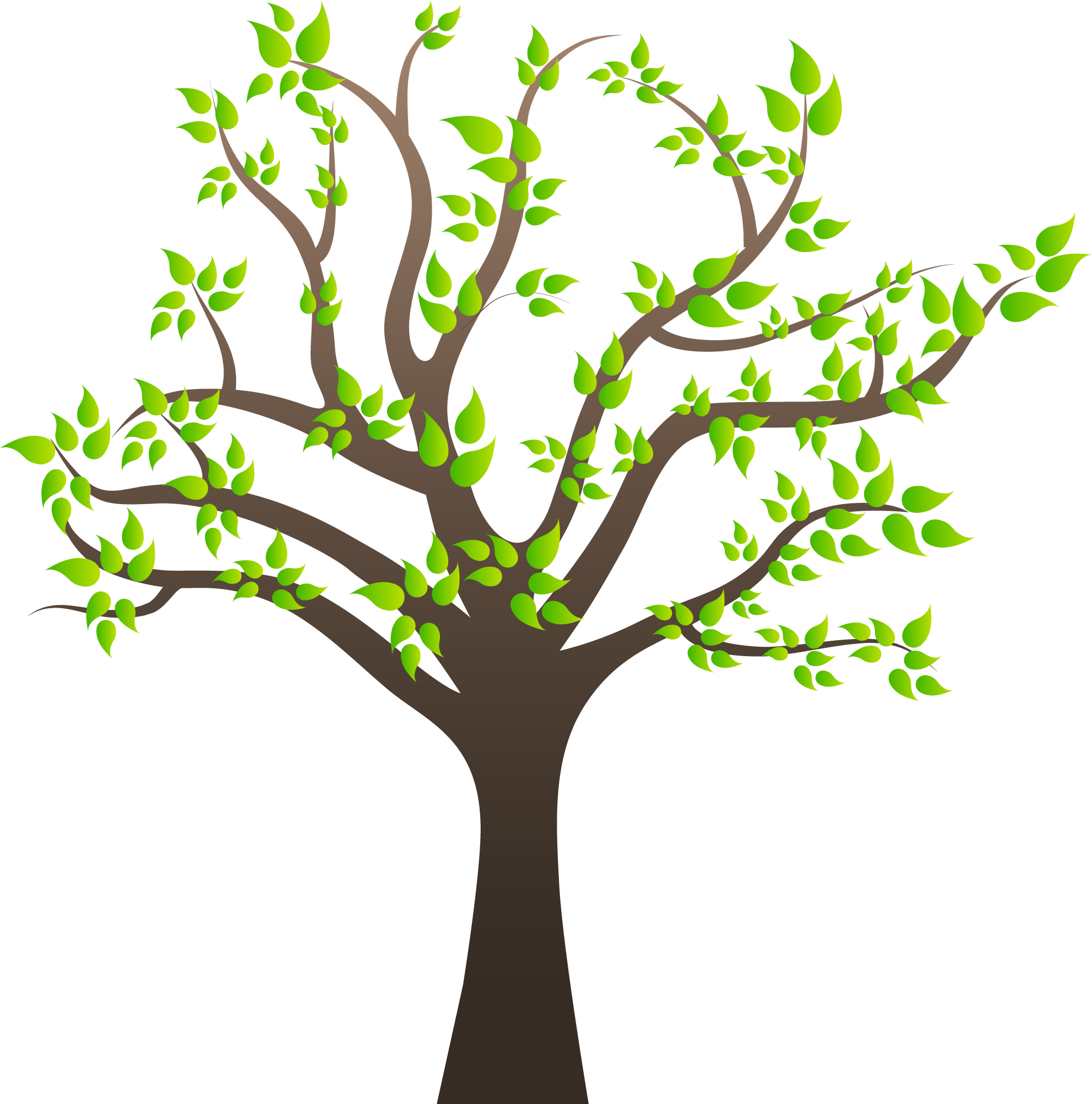 Svg Transparent Stock Images Quality Transparent Pictures - Tree With Branches Clipart Png (1983x2004), Png Download