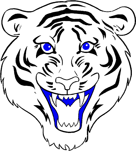Download How To Draw A Tiger Face In A Few Easy Steps Tiger Face Step By Step Png Image With No Background Pngkey Com