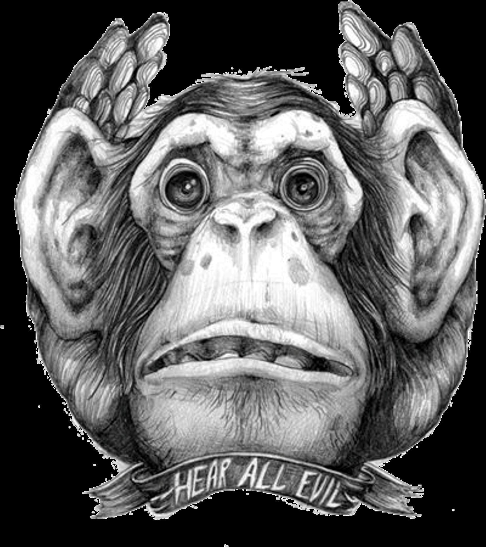3 Monos Sabios Tatuajes download pinmuhammad syahrul - los tres monos sabios