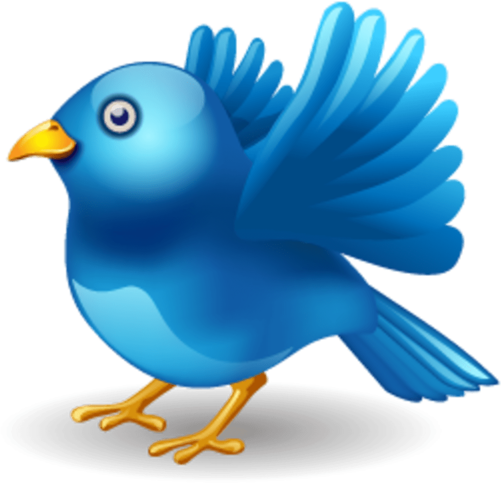Twitter Vector Icons Massive Icon Set - Twitter Bird (1020x1020), Png Download