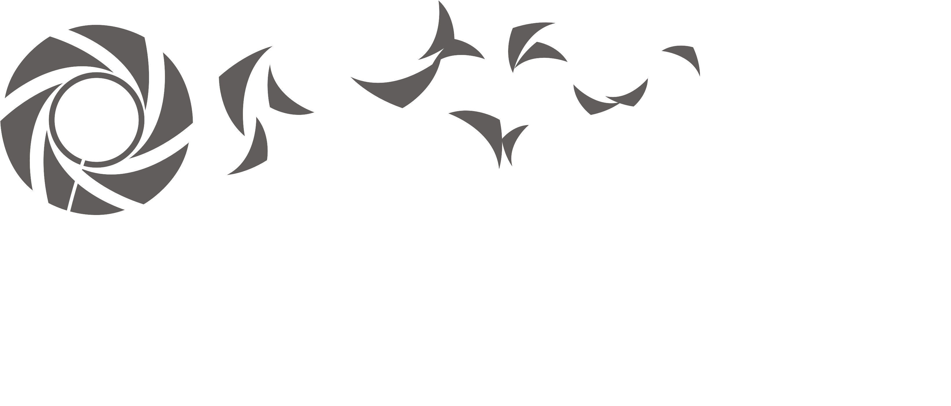 Download Png Logo Photography Library Photography Logo Png Transparent Png Image With No Background Pngkey Com