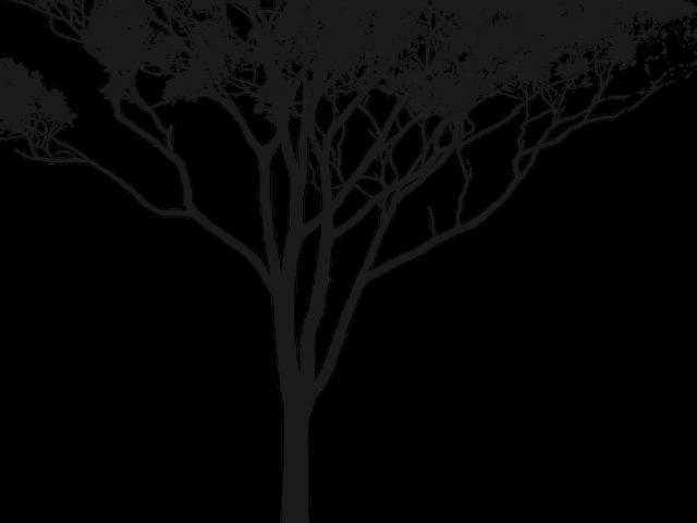 Gum Tree Clipart