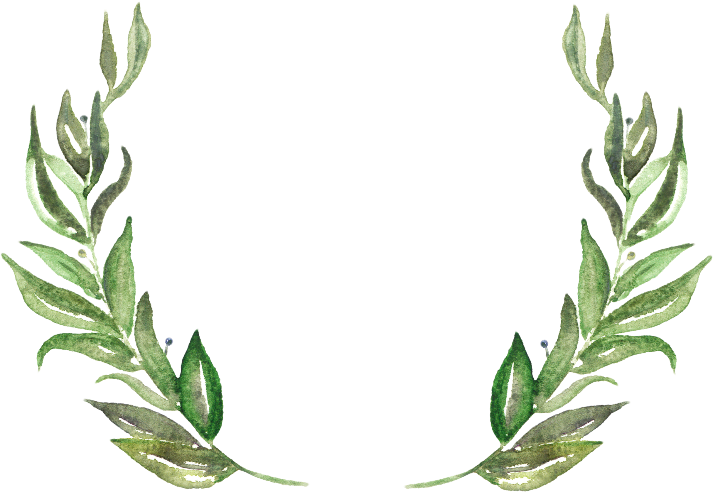 Download Leaves Png Wedding Grass Png Png Image With No Background Pngkey Com Discover 3320 free leaves png images with transparent backgrounds. leaves png wedding grass png png