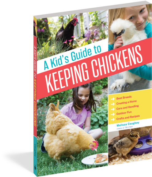A Kid's Guide To Keeping Chickens - Kid's Guide To Keeping Chickens: Best Breeds, Creating (525x600), Png Download