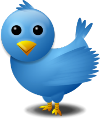 Twitter Bird Logo Psd - Twitter Search Png (338x400), Png Download