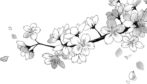 [RP - Ato] A Arte da Vida e da Morte 88-886812_transparent-black-hearts-tumblr-manga-flower