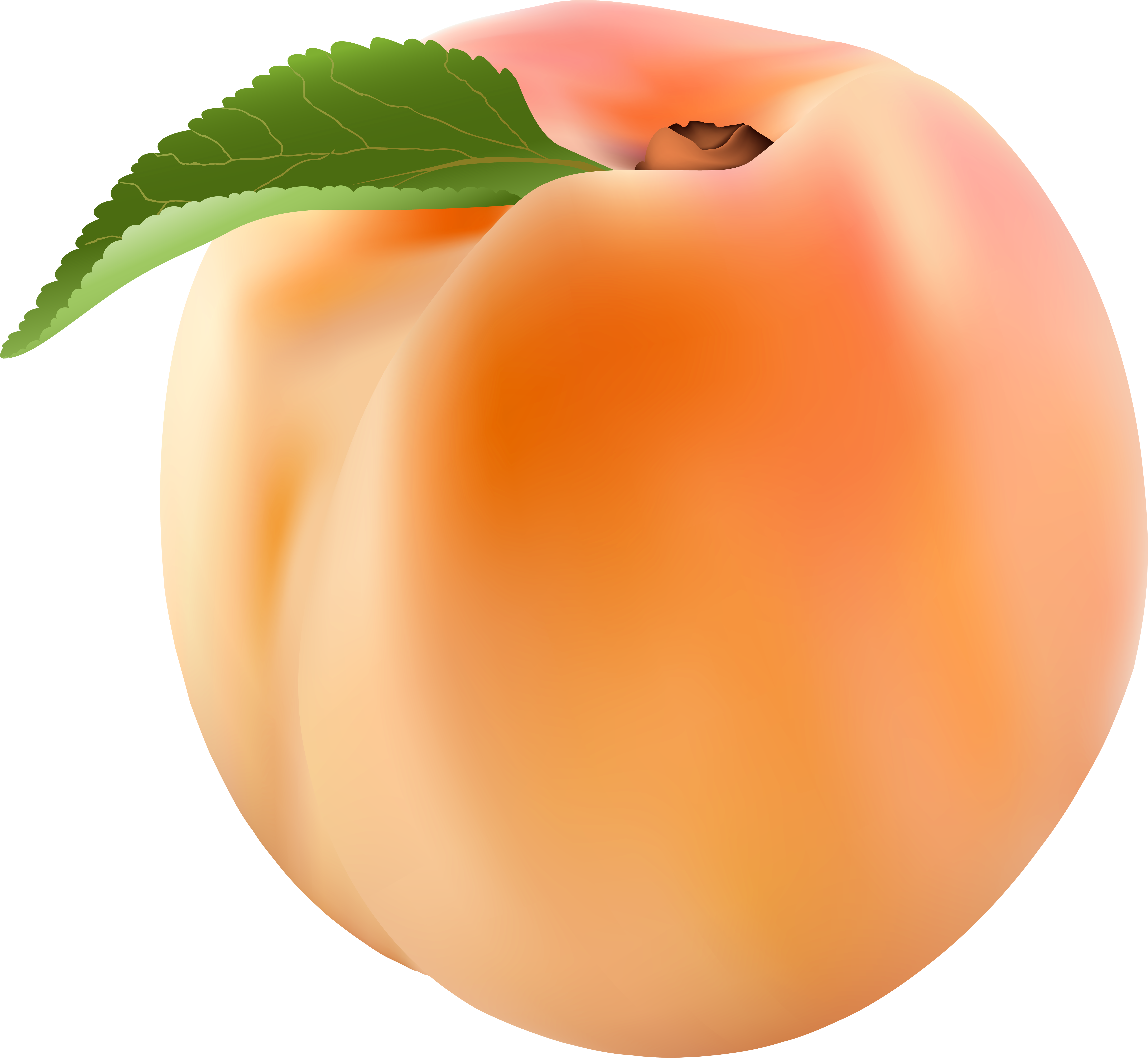 Персики картинка на прозрачном фоне