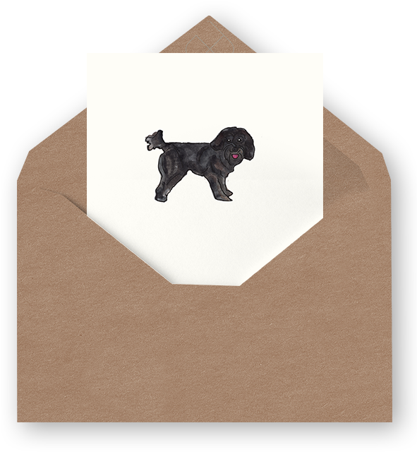 Download Shitzu Blank Card Neapolitan Mastiff Png Image With No Background Pngkey Com