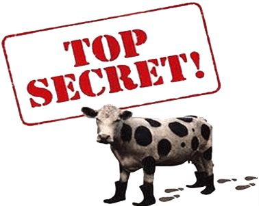 92-927979_secret-cow-top-secret-cow-boot
