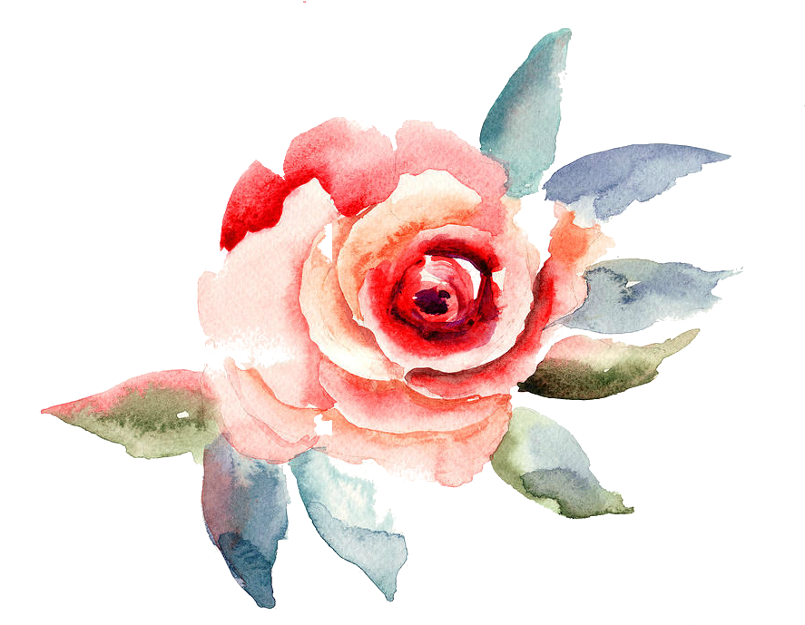Travelling To Infinity - Rose Flower Illustration (900x738), Png Download
