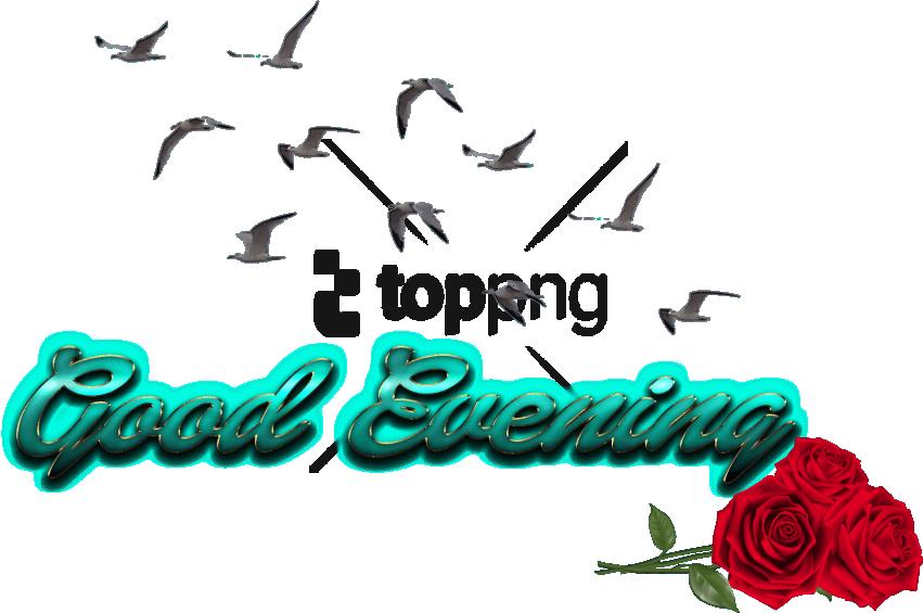 Free Png Cb Birds Picsart Png Image With Transparent - Picsart Cb Png All (851x565), Png Download