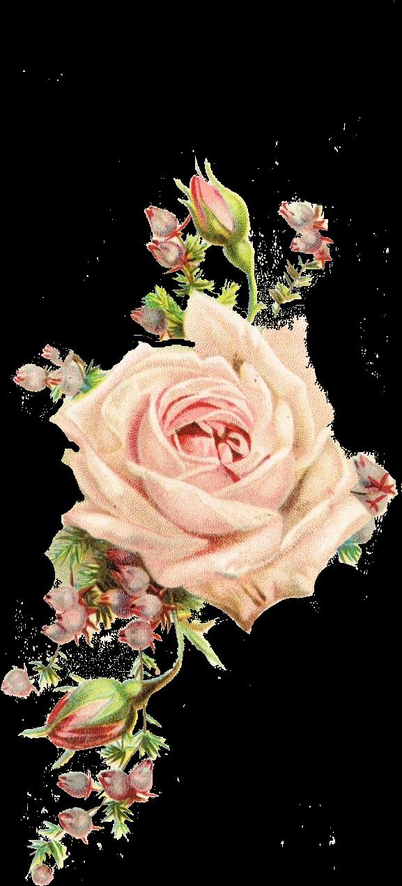 Download Roses, Vintage Printable - Vintage Flowers PNG