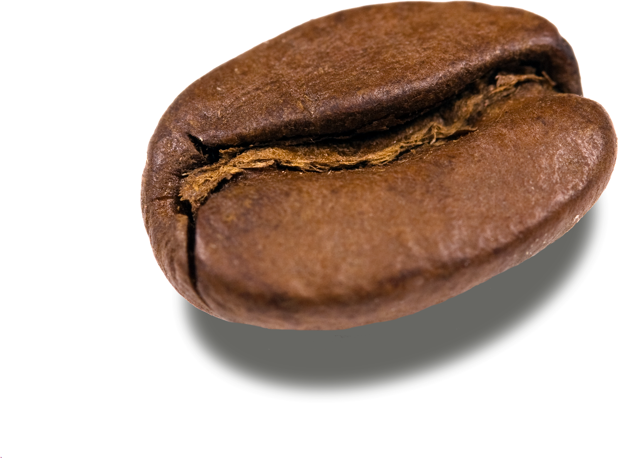 Download Coffee Beans Png Transparent Images - Coffee Bean ...