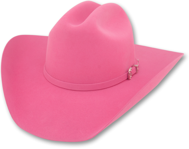 Download 10x Fur Felt Cattleman Cowboy Hat Png Image With No Background Pngkey Com Available in png and vector. 10x fur felt cattleman cowboy hat png